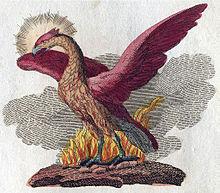 220px-Phoenix-Fabelwesen