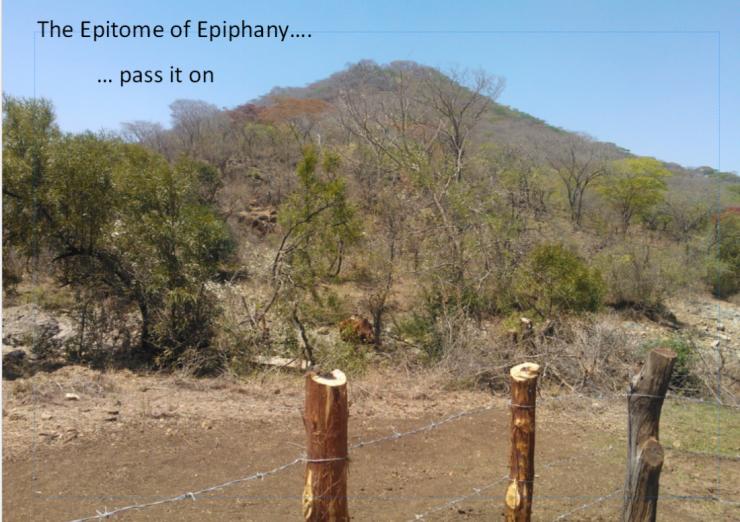 ePITOME OF ePIHANY